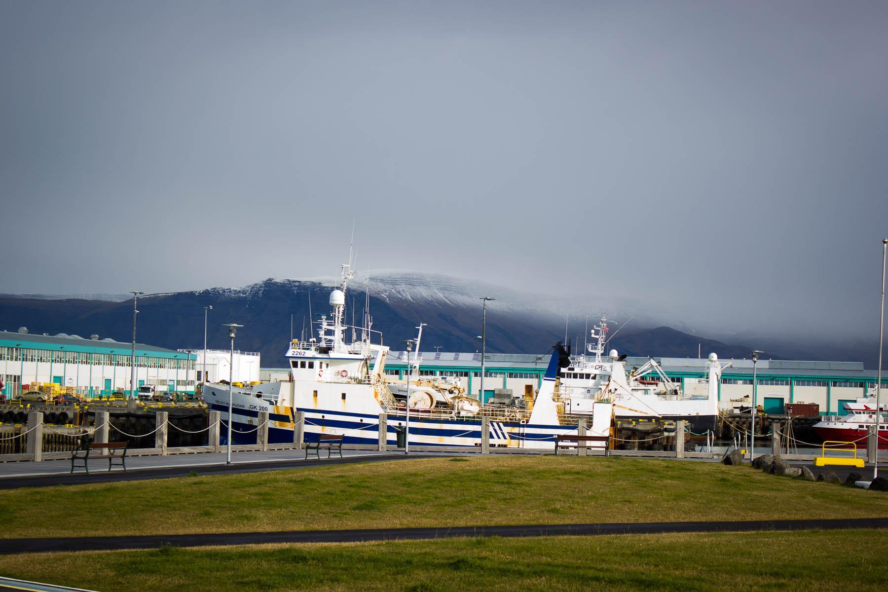 Island Tag Vier - Abreise (12 von 18)