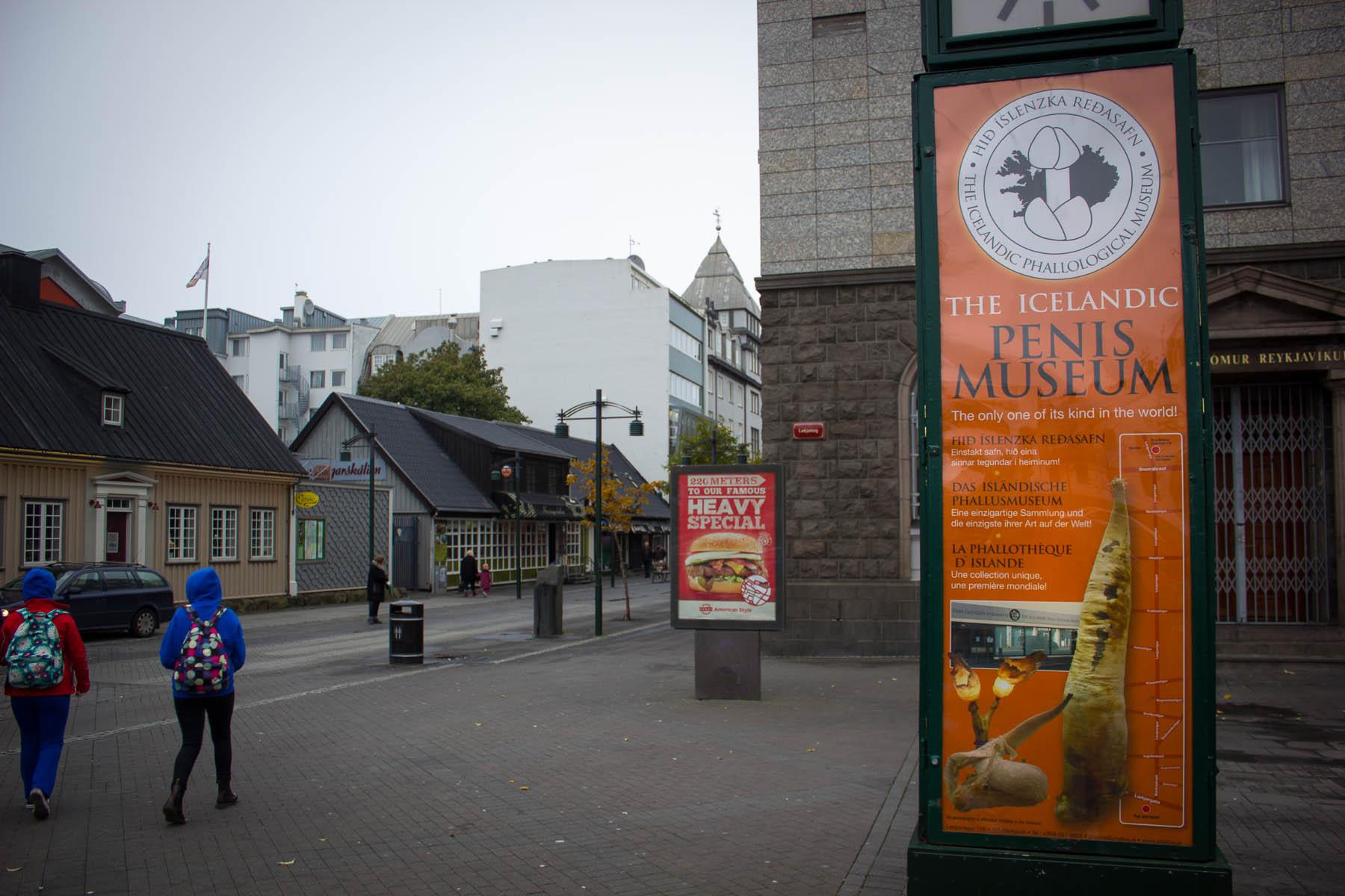 Island Tag Vier - Abreise (6 von 18)